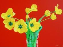 tulipe-yellow